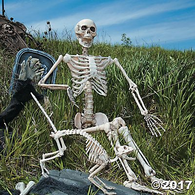 Life Size Posable Skeleton