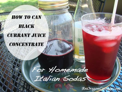 Canned Black Current Juice Concentrate {For Italian Sodas} - An Oregon Cottage | An Oregon Cottage