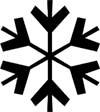 Snowflake Bentley Writing Curriculum
