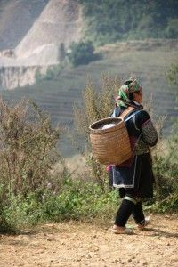 In the sapa hills » Experience Travel Group Blog » Vietnam Family Holidays – an overview of where to go, when, what to do and which hotels?