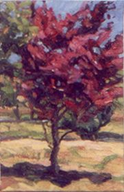 Red Tree. Oil on Canvas.
