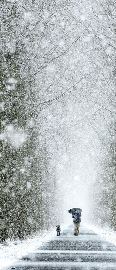 a Winter's Walk ....