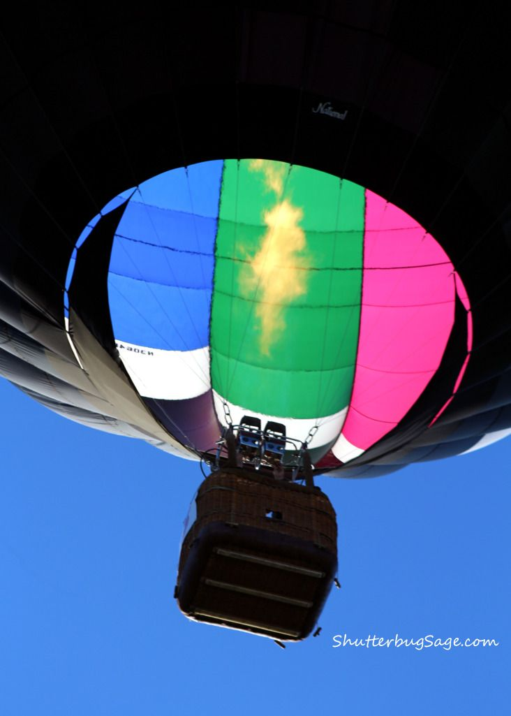 Midwest Balloon Fiesta - View from Underneath