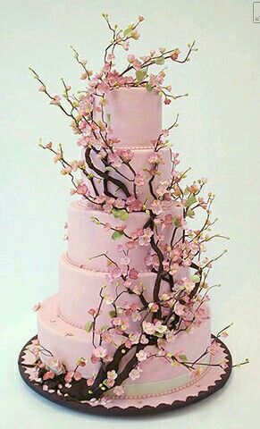 Foto torte spettacolari