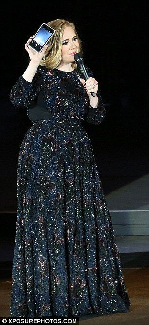 Don't snap! Aside from the weather, Adele also confronted a concertgoer for the frequency in which she was using her phone during the show