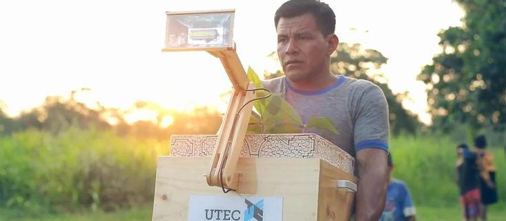 Para brindar luz a los pueblos de la selva peruana, un desarrollo de la Universidad de Ingeniería y Tecnología de Perú llamado 'Plantalámpara' genera energía autosostenible mediante el proceso de fotosíntesis de las plantas.
