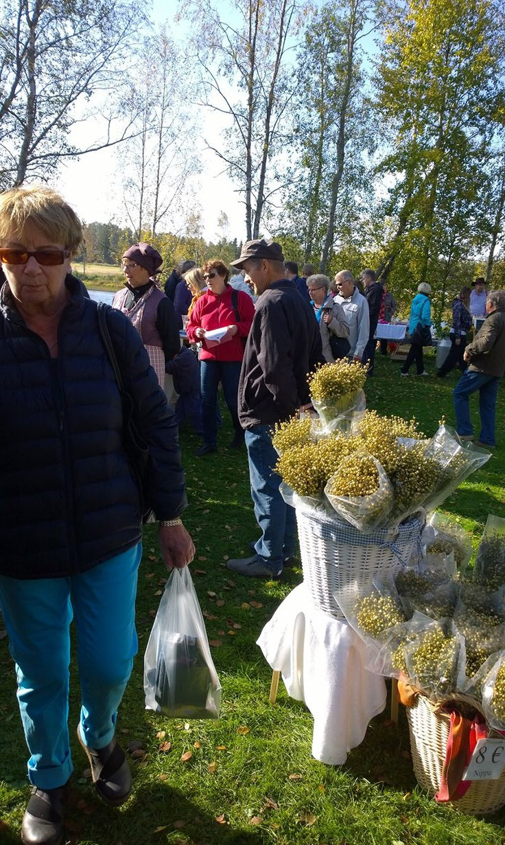 Harva markkinavieras joutui lähtemään kotiin tyhjin käsin. Oulu (Finland)