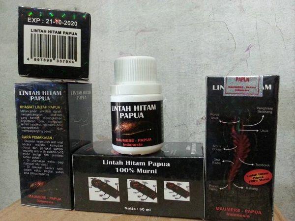 manfaat minyak lintah herbal lintah pinterest
