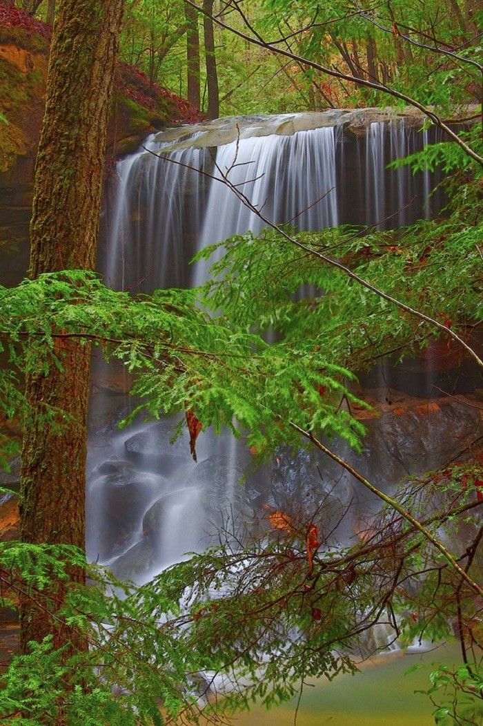 7. Turkey Foot Falls in the Sipsey Wilderness. 8 enchanting spots in Alabama you didn't know about