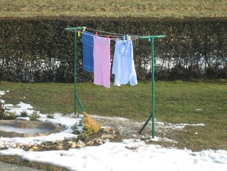 11 best images on pinterest laundry laundry for Tendedero jardin