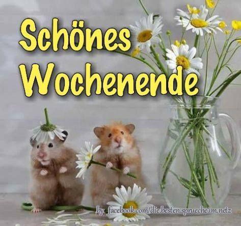 Sonniges Wochenende !