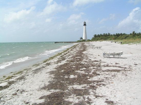 Bill Baggs Cape Florida State Park, Key Biscayne Picture: The beach and Cape Florida Lighthouse - Check out TripAdvisor members' 4,370 candid photos and videos of Bill Baggs Cape Florida State Park