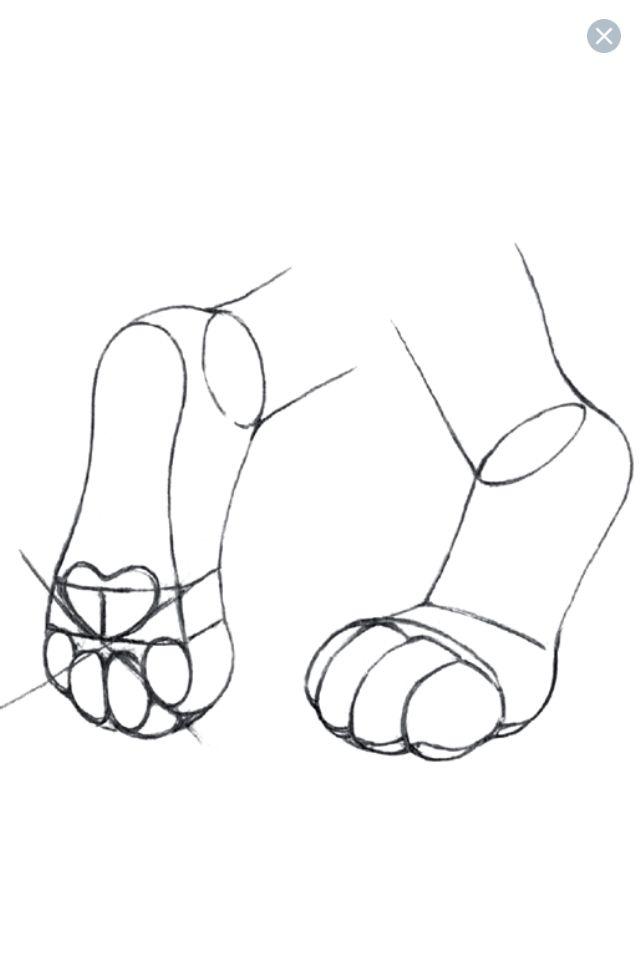 Feet Paws Paw Drawing Furry Drawing Furry Art