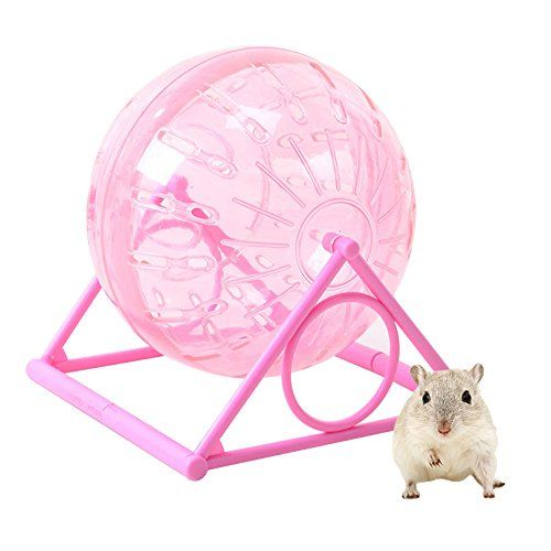 Petacc Hamster Exercise Wheel Hamster Toy Ball Small Animal Wheel With Holder 5 4 Diameter Red Learn More Reviews Of Hamster Toys Exercise Wheel Small Pets