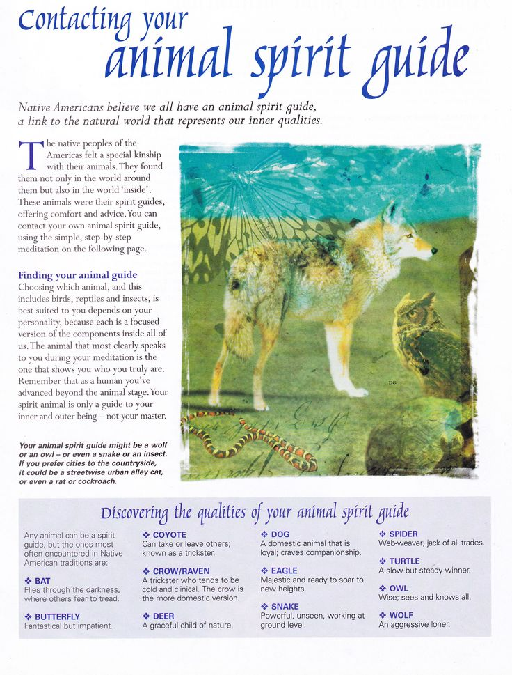 Book of Shadows:  #BOS Contacting Your Animal Spirit Guide page. - Pinned by The Mystic's Emporium on Etsy