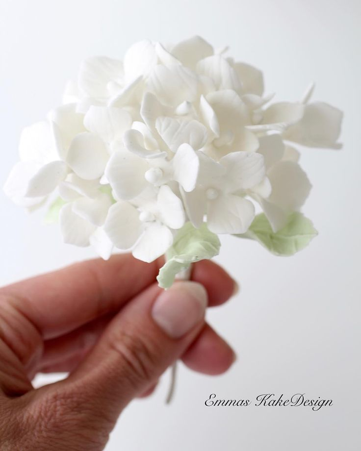 Hydrangea sugar flower tutorial. www.emmaskakedesign.no