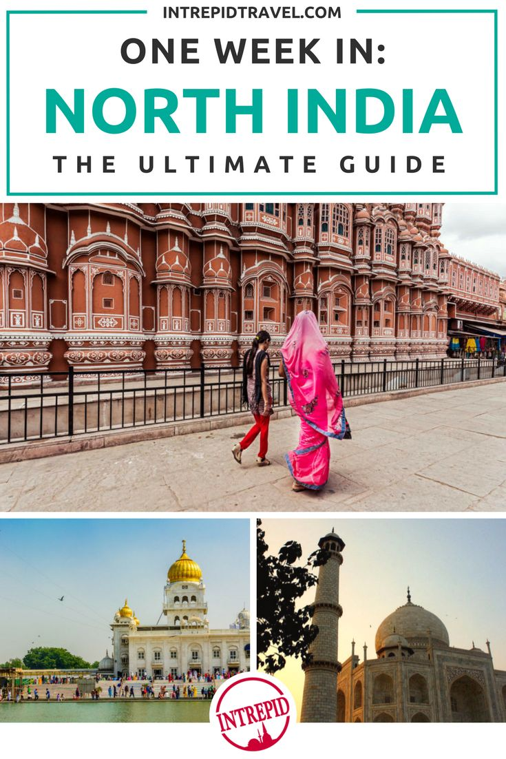 One week in North India: The Ultimate Guide