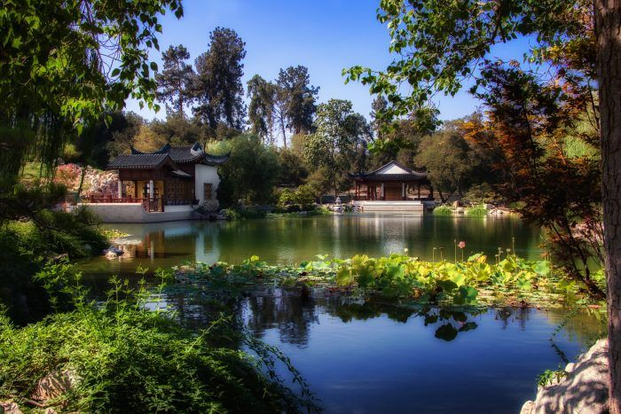 3. You could spend an entire day at Huntington Library and Gardens and never run out of beautiful scenery to capture on camera.