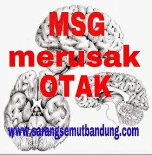 Bahaya MSG Bagi Otak