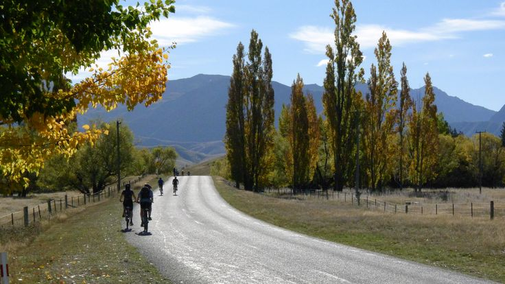 The Active Earth Adventures team got a bike and did part of the Alps to Ocean trail from Twizel to Ohau!