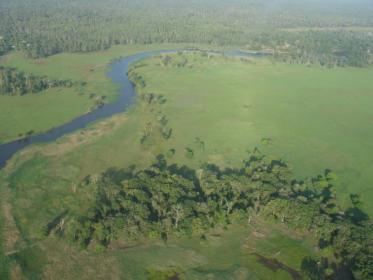 Tonda Wildlife Management Area lies south-west of Western Province and is an incredible and important wetland area.  http://www.pagahillestate.com/the-natural-beauty-of-western-province/