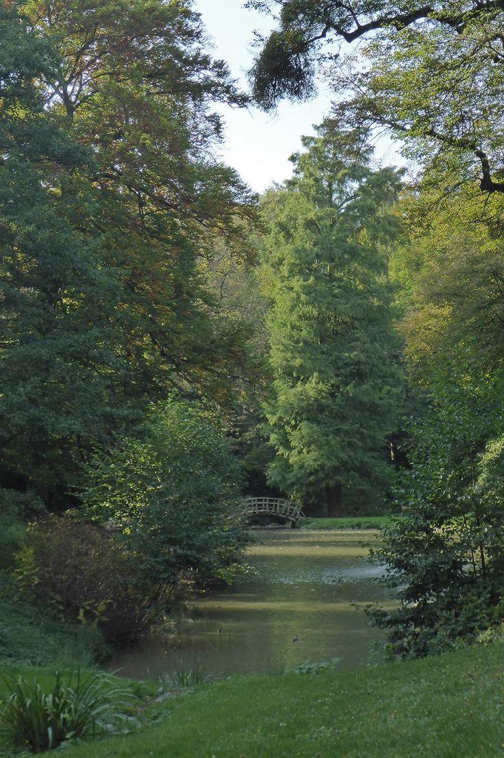 #Staatspark #Fürstenlager #Schwanenteich #Holzbrücke #Brücke #Sichtachse #Gartendenkmalpflege #Bensheim #HessischeWeinstraße #b_lau