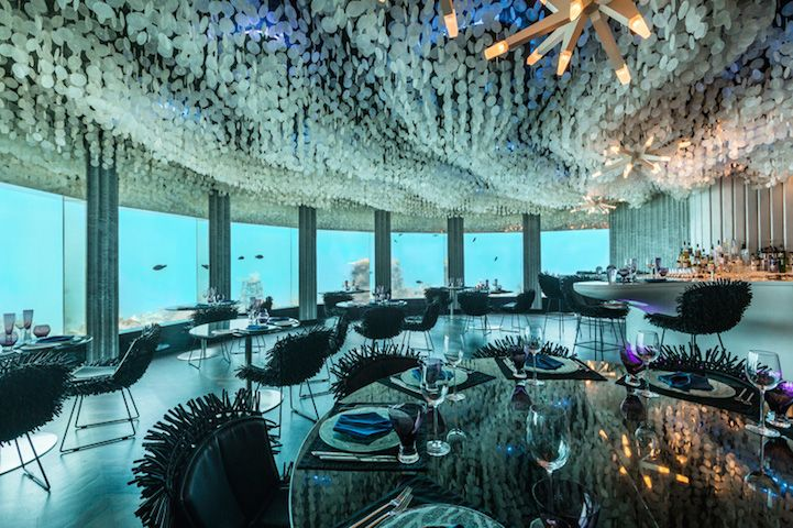 This stunning underwater restaurant lets guests dine next to ocean life. #design #dining
