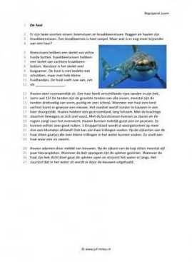 Begrijpend lezen - De haai