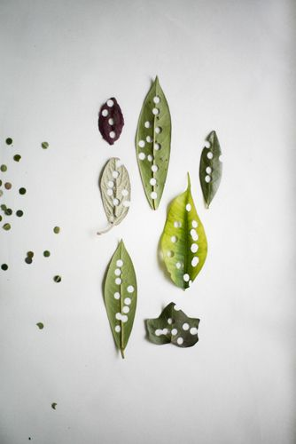 organic confetti. hole punch leaves and flowers and what do you have??? fresh natural confetti. via kinfolk