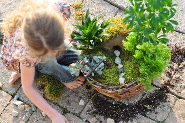 A grace garden. Build during lent with the boys. From Ann Voskamp's blog.