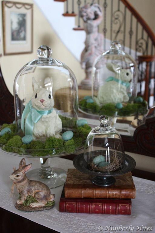 Sweet bunnies!