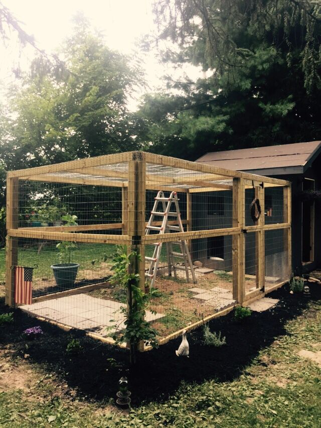 Duck house and run coming together chicken coops for Duck houses and runs