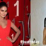 Veena Malik's taunt: Who is Ashmit Patel?
