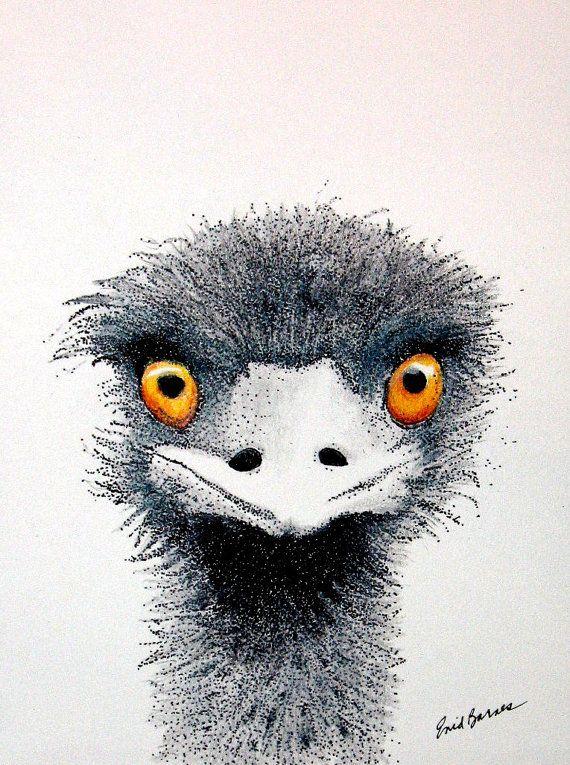 Ostrich Original Pen And Ink Colored Pencil