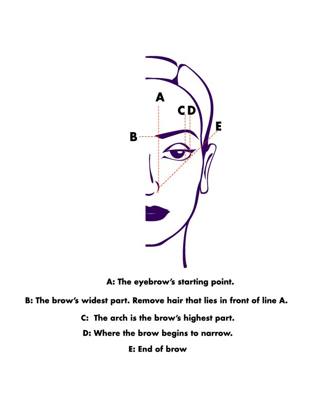 Eyebrow Shape Chart : eyebrow, shape, chart, Eyebrow, Shapes, Chart, EyebrowShaper