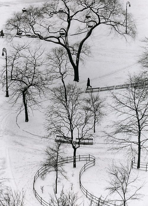 ENDLESS PATH:   If I did not love you and you did not love me, would it better either of us any good? But, if I loved you and you loved me, then whatever comes to be, best should!  ~ddl    Photo by Andre Kertesz