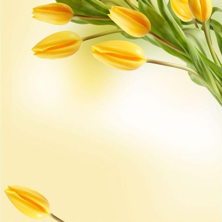 Фон цветы для открытки