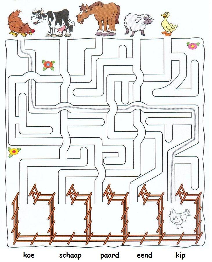 Hoe moeten de dieren lopen naar de wei?