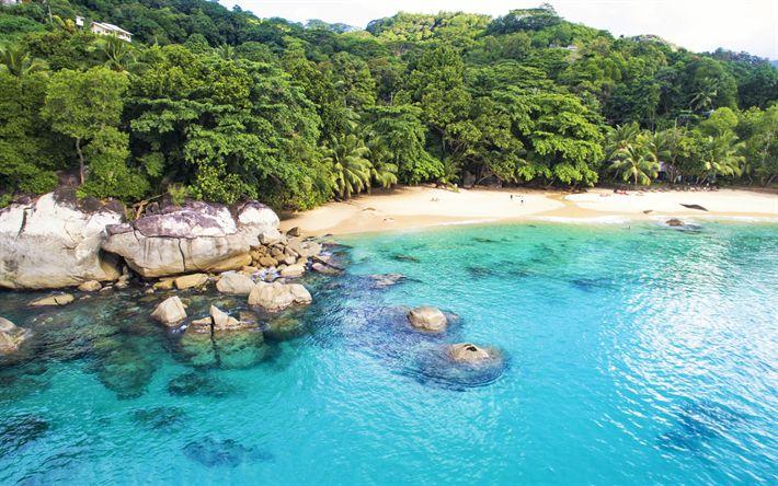 Hämta bilder Seychellerna, Ocean, beach, palms, sommar, Indiska Oceanen
