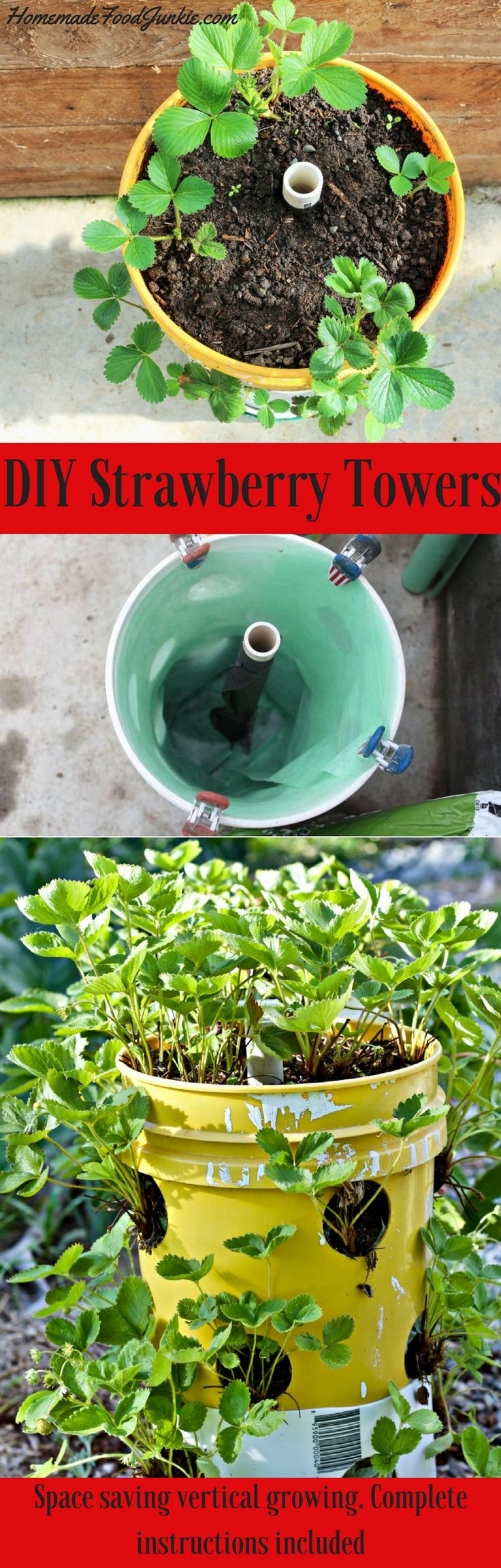 Growing strawberries in gutters diy idea - Diy Strawberry Towers To Manage And Control Strawberry Plants Small Towers Are Great For Small