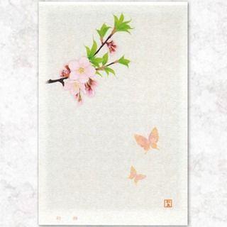 【waillust_izumikyou】さんのInstagramをピンしています。 《◇桜ことばポストカード:『初桜』  #illustrator #和風イラスト #イラストレーター #izumikyou #和泉匡 #和風デザイン #獅子牡丹#桜#ポストカード#春#和道楽#和風ポストカード》