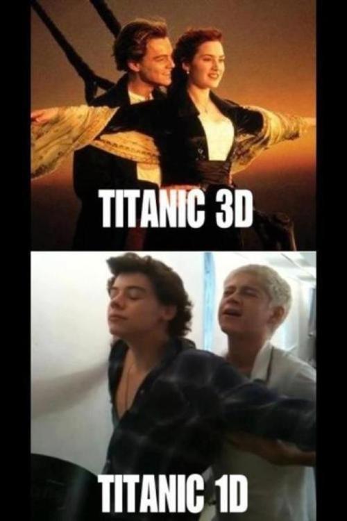 Niall Horan & Harry Styles One Direction Titanic http://www.befunkey.net