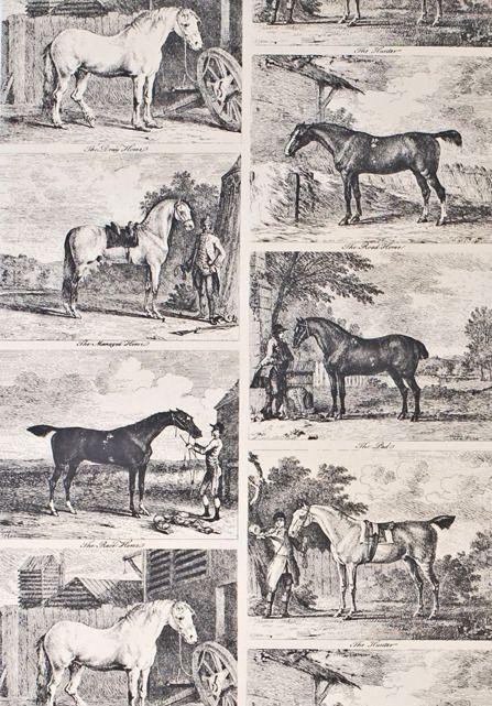Gilpin Horses