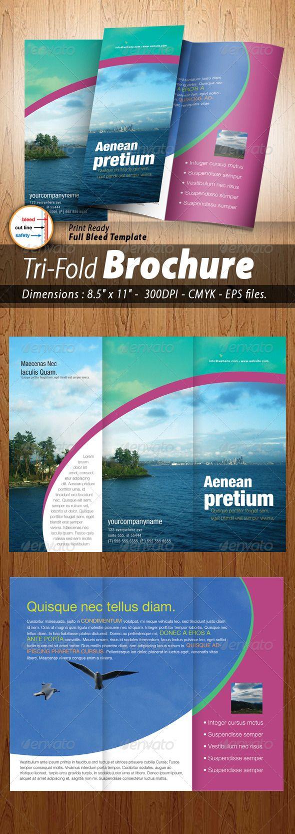87 Best Tri Fold Brochure Images On Pinterest Brochures
