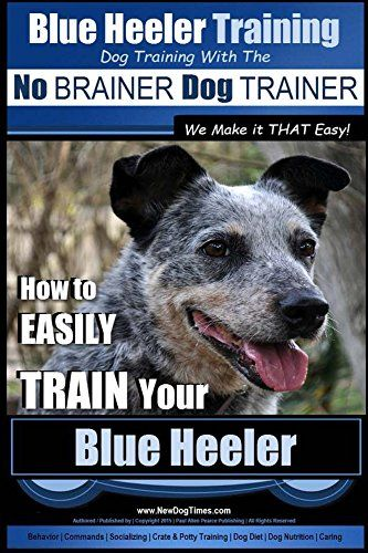 """Blue Heeler Training 