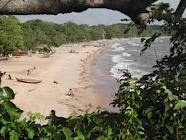 ilha do marajo,