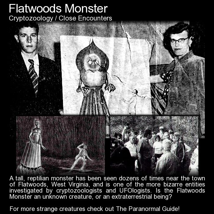 "Flatwoods Monster.  ""...a hovering object that soon approached them, metallic and resembling a rocket or tube, and then saw a green reptilian head with dark eyes at the top of it, and it seemed that the creature was actually in the rocket or wearing it, as only its top quarters could be seen. It had two long arms with two fingers on each, with scaly skin and a strange spade shaped hood, was seen behind it."" Read more here: http://www.theparanormalguide.com/blog/flatwoods-monster"
