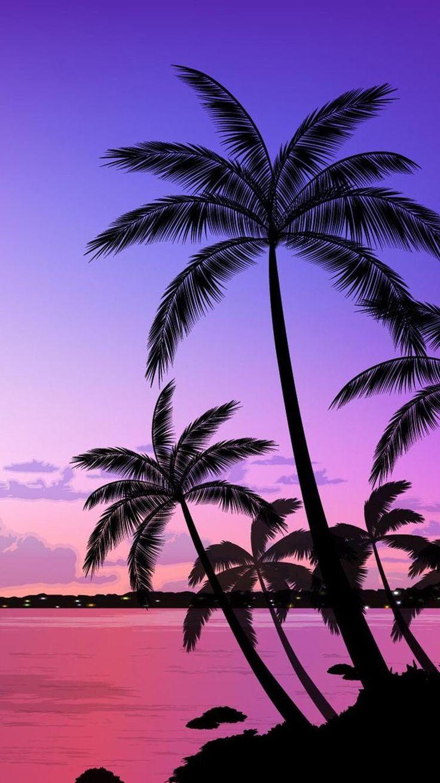 Поздравление рождением, картинки с пальмами на айфон