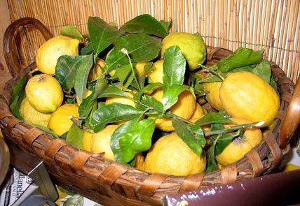 Limoncello, Lemoncello, Lemonchello, Lemon Cello, Limoncello Recipes, Italian Limoncello Recipe, How To Make Limoncello