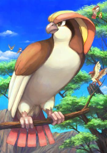 Generation 1 Pokedex: Pokemon 018 - Pidgeot